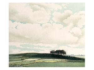 Clouds by Phil Greenwood