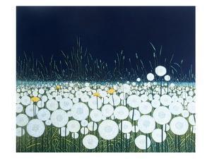 Dream Clocks by Phil Greenwood