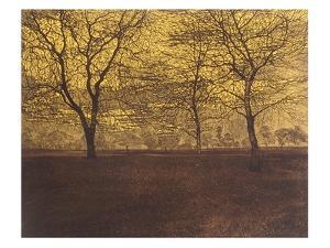 Dusk Light by Phil Greenwood