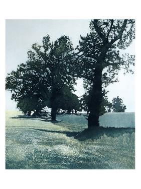 Green Oaks by Phil Greenwood