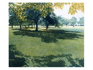 Greenshade by Phil Greenwood
