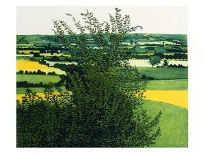Greenvale by Phil Greenwood