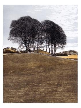 Hilltop by Phil Greenwood
