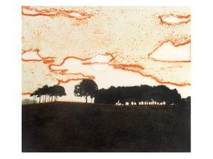 Late Light by Phil Greenwood