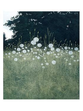 Meadow Clocks by Phil Greenwood