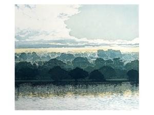 Meadow Light by Phil Greenwood