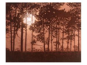 Moon Burst by Phil Greenwood
