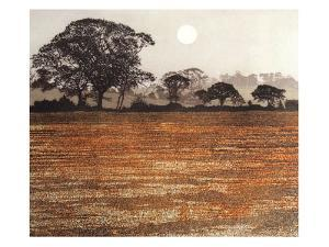 Moon Gold by Phil Greenwood