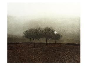 Moon Mist by Phil Greenwood
