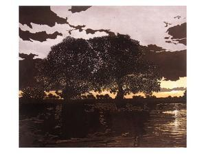 Nightpool by Phil Greenwood
