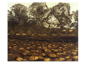 Poolside by Phil Greenwood