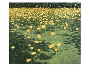 Shadow Gold by Phil Greenwood