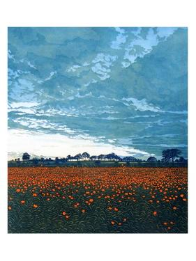 Sky Anvil by Phil Greenwood