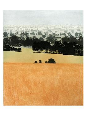 Treeline by Phil Greenwood