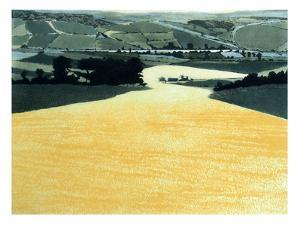 Vally Gold by Phil Greenwood