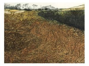 Winter Grass by Phil Greenwood