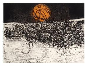 Winter Thorn by Phil Greenwood