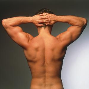 Naked Torso (back View) of An Athletic Young Man by Phil Jude