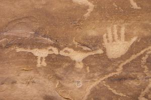A Petroglyph Panel at Petroglyph Point in Mesa Verde National Park by Phil Schermeister