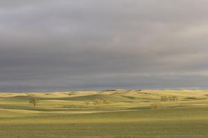 A Thunderstorm Above Oglala National Grassland in Nebraska by Phil Schermeister