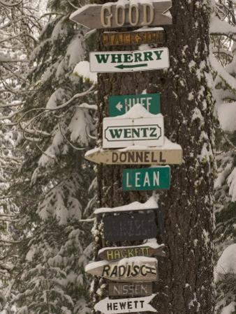 Cabin Owner Signs on a Tree in Winter in the Forest by Phil Schermeister