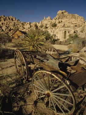 Desert Queen Ranch at Joshua Tree National Park, California by Phil Schermeister