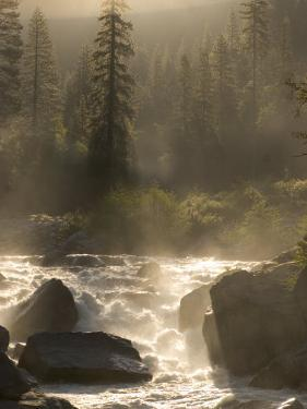 North Fork of the Stanislaus River Near Dorrington at 6,000 Feet by Phil Schermeister