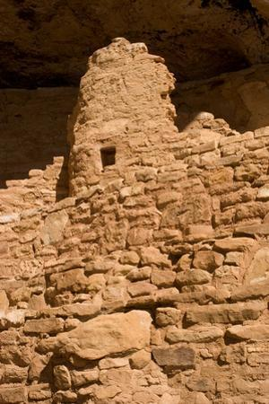 Ruins of a Small Cliff Dwelling, Step House, in Mesa Verde National Park by Phil Schermeister