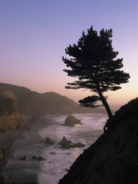 Scenic View of the Oregon Coast at Twilight by Phil Schermeister