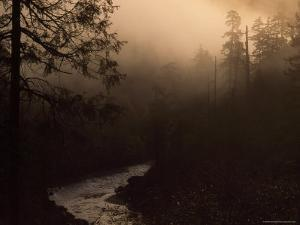 South Fork of Smith River at Sunrise, California by Phil Schermeister