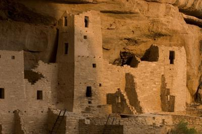 The Ruins of a Cliff Dwelling, Cliff Palace, in Mesa Verde National Park by Phil Schermeister