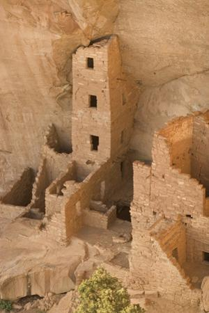 The Ruins of a Cliff Dwelling, Square Tower House, in Mesa Verde National Park by Phil Schermeister