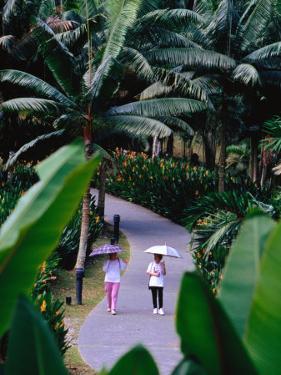 Women Walking in Singapore Botanic Gardens, Singapore, Singapore by Phil Weymouth