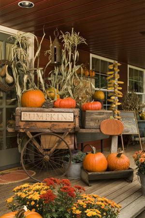 Autumn Harvest I