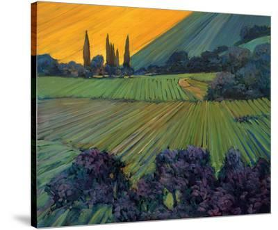 Champange Vineyards by Philip Craig