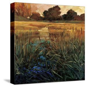 Golden Creek by Philip Craig