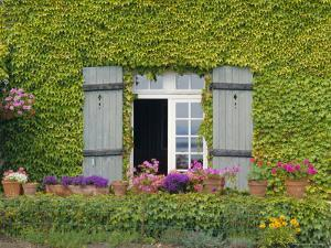 Close-up of House at St. Servan-Sur-Mer, Near St. Malo, Brittany, France, Europe by Philip Craven