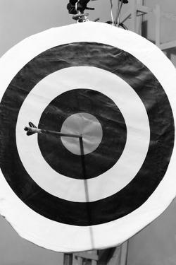 Archery Target with Arrow in the Bull's Eye by Philip Gendreau