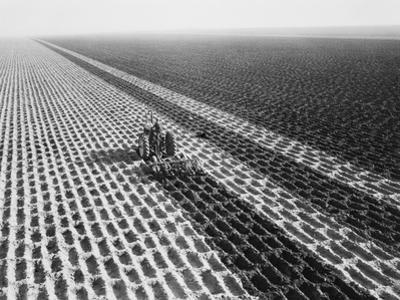 """John Deere Model """"G"""" Tractor in Field by Philip Gendreau"""