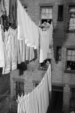 Laundry Drying on Lines by Philip Gendreau