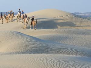 Men Traveling on Camelback Across Sand Dunes, Jaisalmer, Rajasthan, India by Philip Kramer