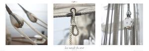 Les nœuds du vent by Philip Plisson
