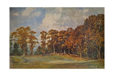 'Grove at Bridgnorth', 1901 (1935)