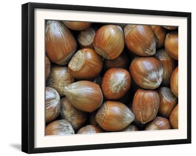 Hazelnuts, Belgium