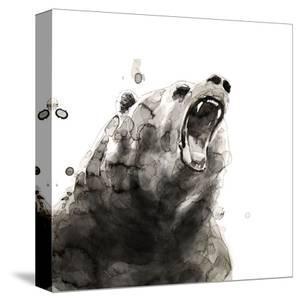 Bear by Philippe Debongnie
