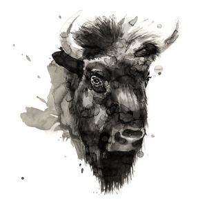 Buffalo by Philippe Debongnie