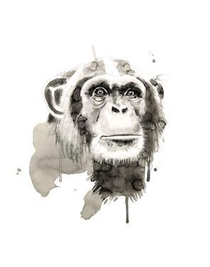 Chimp by Philippe Debongnie