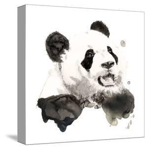 Panda by Philippe Debongnie