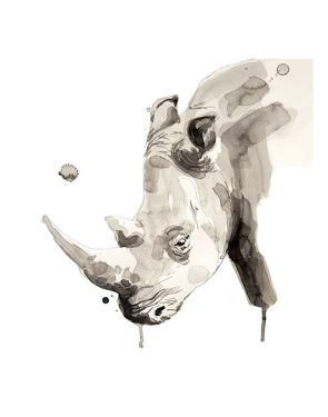 Rhino by Philippe Debongnie