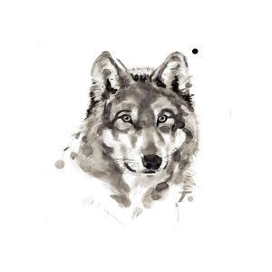Wolf by Philippe Debongnie